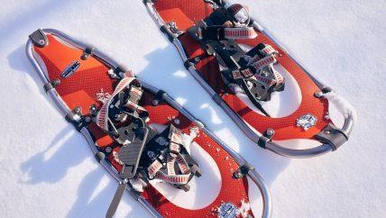 snowshoes rental
